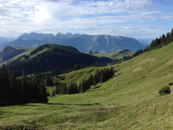 Berge Sommer (10)