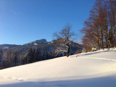 Berge Winter (7)